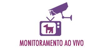 monitoramento2